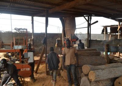 Wood Senegal 3